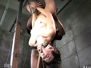 Bdsm, Bondage , Fetiche, Hardcore , Submisso , Tortura ,