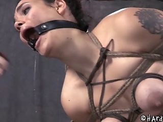 BDSM, Bondage, Brunette, Fetish, Screaming, Spanking, Torture,